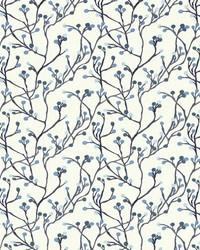 Terrarium Bluebird by