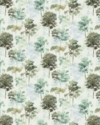 Tranquil Trees Sky by