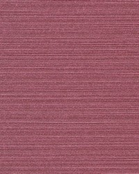 Tudor Lilac by