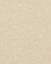 Borchgrave Parchment by
