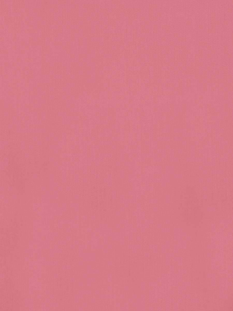 dana gibson wallpaper stroheim