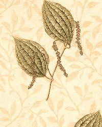 Pepper Pods Antique Spruce by