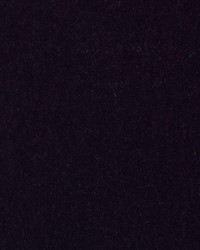 HV16156 217 EGGPLANT by