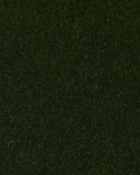 HV16156 321 PINE by