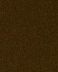 HV16156 554 KIWI by