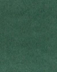 HV16460 597 GRASS by