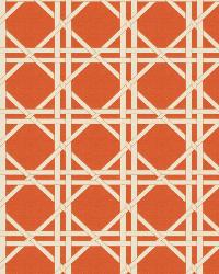 Vlad Lattice Orange by