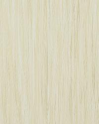 50018w Theraputic Almond 02 by  Fabricut Wallpaper