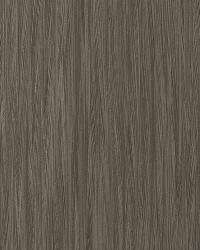 50018w Theraputic Sepia 04 by  Fabricut Wallpaper