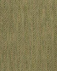 Dromedary Woven Asparagus by
