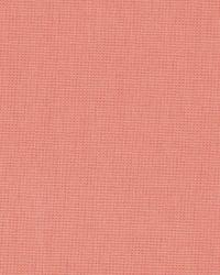 Coral / Peach Principal Fabric Fabricut Fabrics Principal Petal