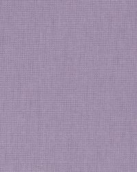 Lavender / Purple Principal Fabric Fabricut Fabrics Principal Hyacinth