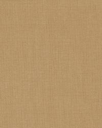 Taupe / Tan Principal Fabric Fabricut Fabrics Principal Tea Stain