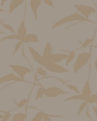 Persimmon Leaf Wallpaper Gold  Taupe by