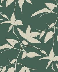 Persimmon Leaf Wallpaper Dark Green by