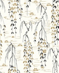 Willow Branches Wallpaper White  Black  Gold by