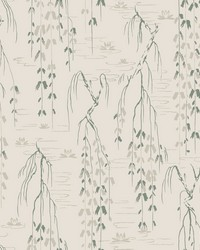 Willow Branches Wallpaper Green by