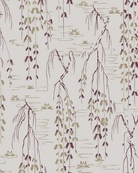 Willow Branches Wallpaper Grey  Purple by