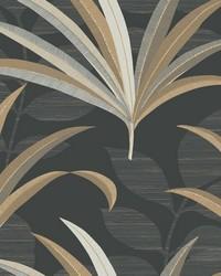 El Morocco Palm Wallpaper Blacks by