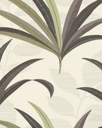 El Morocco Palm Wallpaper Beiges by