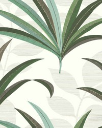 El Morocco Palm Wallpaper White Off Whites by