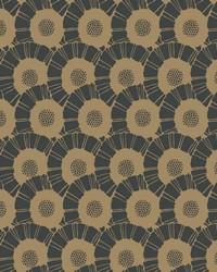 Coco Bloom Wallpaper Blacks by