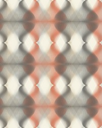Hypnotic Wallpaper - Orange Grey Oranges by