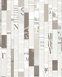 Read Between the Lines Wallpaper - Mink Khaki Blacks by