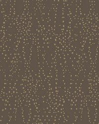 Star Struck Wallpaper Brown Gold by