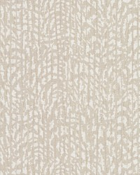 Palm Grove Wallpaper Browns by