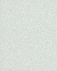 Gala Wallpaper Blacks by