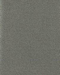 Sweet Birch Wallpaper Blacks by