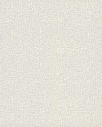 Sweet Birch Wallpaper White Off Whites by