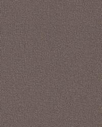 Sweet Birch Wallpaper Purples by
