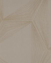 Quantum Wallpaper Blacks by