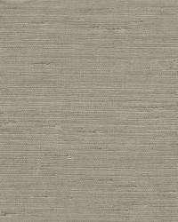 Pampas Wallpaper Browns by