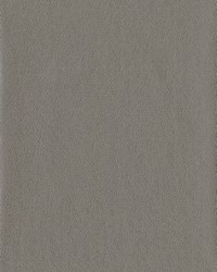 Tatting Wallpaper Browns by