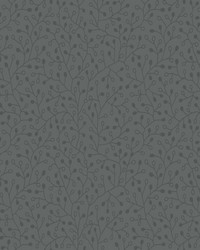 Intrigue Wallpaper Charcoal Blacks by