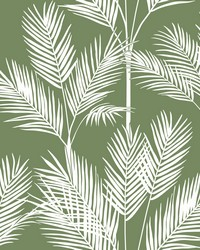 King Palm Silhouette Wallpaper Green by