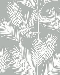 King Palm Silhouette Wallpaper Gray by
