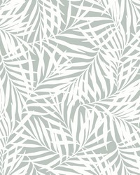 Oahu Fronds Wallpaper Light Green White by