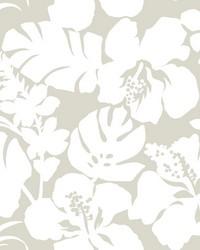 Hibiscus Arboretum Wallpaper Cream by