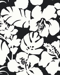 Hibiscus Arboretum Wallpaper Black by