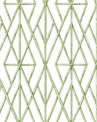 Riviera Bamboo Trellis Wallpaper Green by