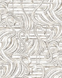 Flamingo Flamboyance Wallpaper Gray   White by