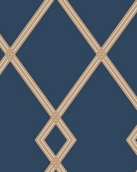 Ribbon Stripe Trellis Wallpaper Navy Copper by
