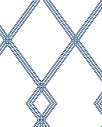 Ribbon Stripe Trellis Wallpaper White Blue by