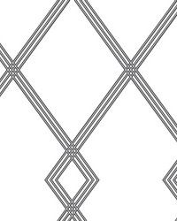 Ribbon Stripe Trellis Wallpaper White Black by