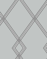 Ribbon Stripe Trellis Wallpaper Grey Black by