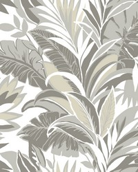 Palm Silhouette Wallpaper Gray   White by